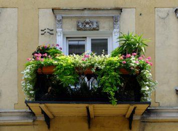 Kto w tym sezonie ma najładniej ukwiecony balkon?