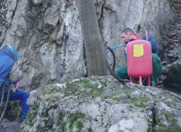 Czyszczą jurajskie skały