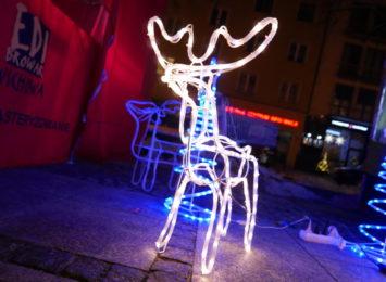 Wandal zniszczył część świątecznej iluminacji na Placu Biegańskiego. Wpadł w ręce Straży Miejskiej