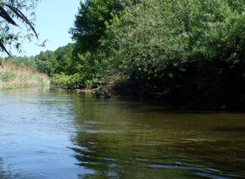 Gwałtowne wzrosty stanów wód w Pilicy i Warcie