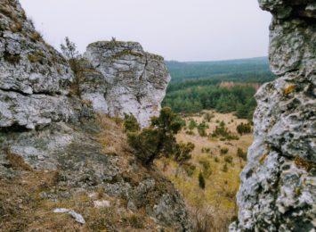 Startuje tegoroczna Juromania, czyli Święto Jury Krakowsko - Częstochowskiej
