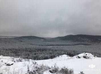 Jura Krakowsko - Częstochowska warta odwiedzenia zimą!