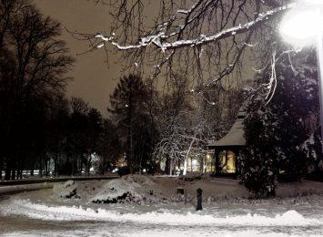 Ale tu pięknie! Czyli zima w częstochowskich parkach...