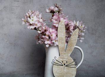 Wielkanocny Zwierzyniec. Oto zając!