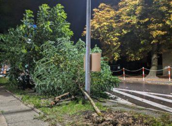 240 razy interweniowała Straż Pożarna na Śląsku minionej doby w związku z porywami wiatru