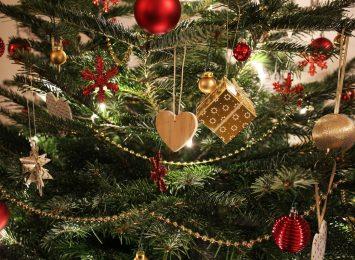 Co zrobić z żywą choinką po świętach?