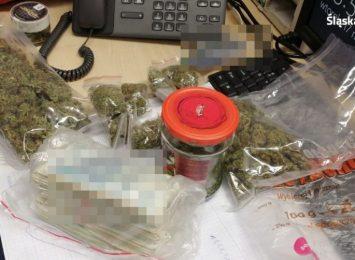 Ojciec i syn wpadli za posiadanie znacznej ilości narkotyków