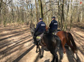 Policyjne patrole konne kontrolują zielone tereny