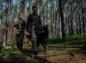 Wyszkolony do udziału w akcjach poszukiwawczych owczarek belgijski Ares rozpoczął służbę w 13. ŚBOT