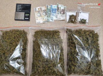 Policjanci z Częstochowy zatrzymali mieszkańca Mstowa. Znaleźli przy nim prawie 2 kg marihuany