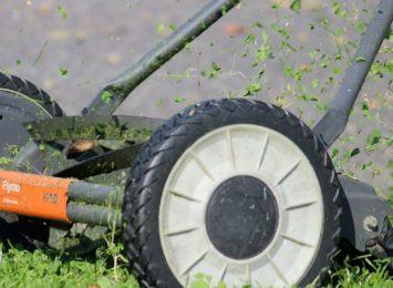 Po Częstochowie, także Blachownia wprowadza ograniczenie w koszeniu trawników
