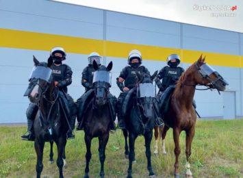 Częstochowscy policjanci zabezpieczali mecz Polonii Bytom z Ruchem Chorzów