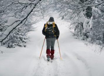 Jak wykorzystać prawdziwą zimę? Polecamy wybrać się na biegówki do Żarek!