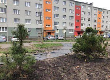 Nowy park kieszonkowy powstaje na Ostatnim Groszu, w rejonie al. Niepodległości 29. Będzie gotowy w maju