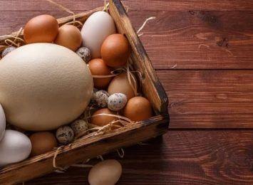 Święta Wielkanocne: Próbowaliście jaj w rozmiarze XXXL?