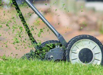 Trwa przywracanie miejskiej zieleni do właściwego, zadbanego stanu