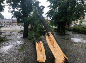 Kilkadziesiąt uszkodzonych dachów, zespół parkowy i zabytkowy kościół - Koniecpol liczy straty. Nasi dziennikarze są na miejscu [RELACJA]