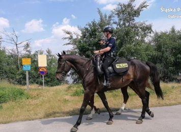 Policjanci konno - patrole na terenach kąpielisk przez całe wakacje