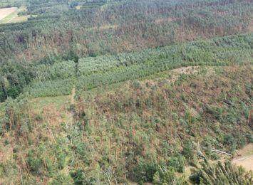 Ogromne zniszczenia lasów w rejonie Koniecpola. Wprowadzono zakaz wstępu do lasów