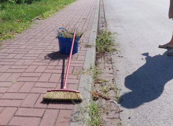 Niekoszona systematycznie trawa - o tym mówi się w Częstochowie. A jak jest w Blachowni? Sprawdziliśmy, czy tam jest podobnie
