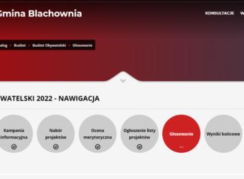 Ruszyło głosowanie w kolejnej edycji Budżetu Obywatelskiego w Blachowni