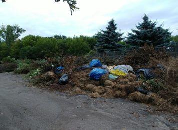 Przy Lasku Aniołowskim zgromadzono ogromne ilości odpadów zielonych, alarmują nas mieszkańcy